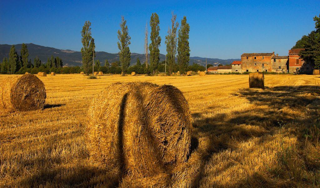 Korting Ontdek het mooie Toscane