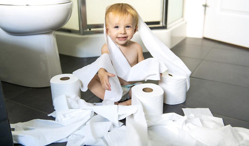96 rollen toiletpapier