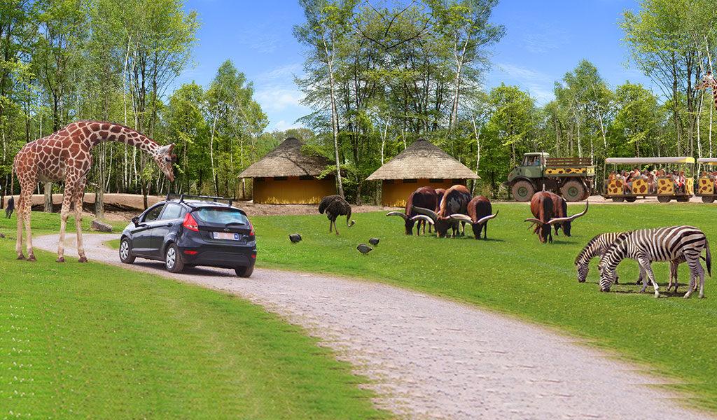 Safaripark Monde Sauvage in België