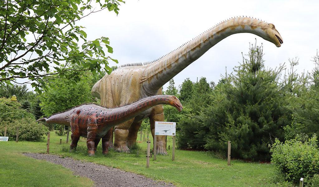 Ticket Dinopark Landgoed Tenaxx